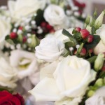 Wedding flowers for bride and bridal party. Close up showing white flowers and red buds that are unopened.